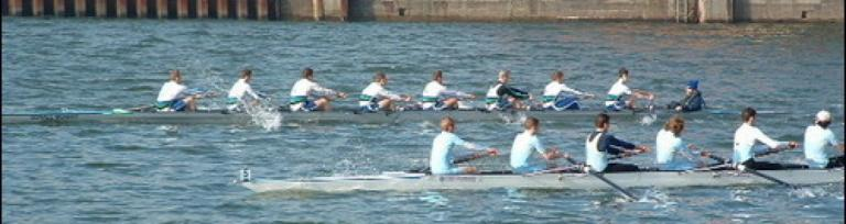 image of rowers in a boat because non-transport businesses also book ferries for their freight needs